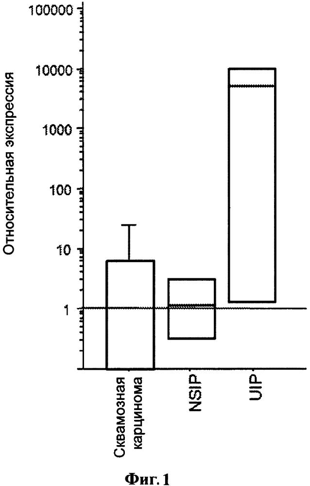 Блокада сигнализации ccl18 через ccr6 как терапевтический способ лечения при фиброзных заболеваниях и раке