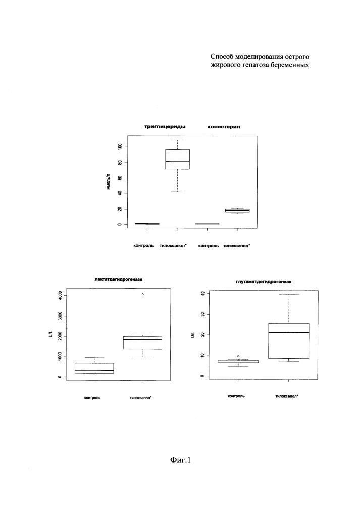 Способ моделирования острого жирового гепатоза беременных