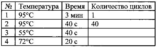 Набор синтетических олигонуклеотидов для определения уровней экспрессии гена pdlim4