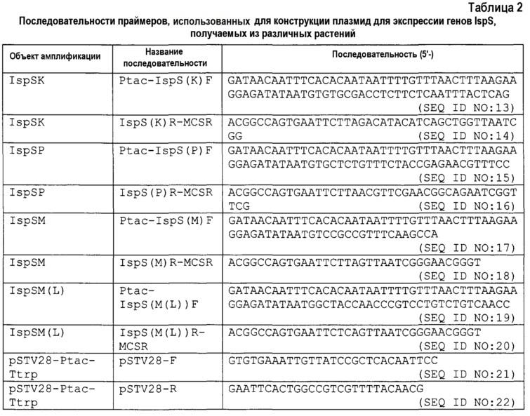 Изопренсинтаза и кодирующий ее ген, способ получения мономера изопрена