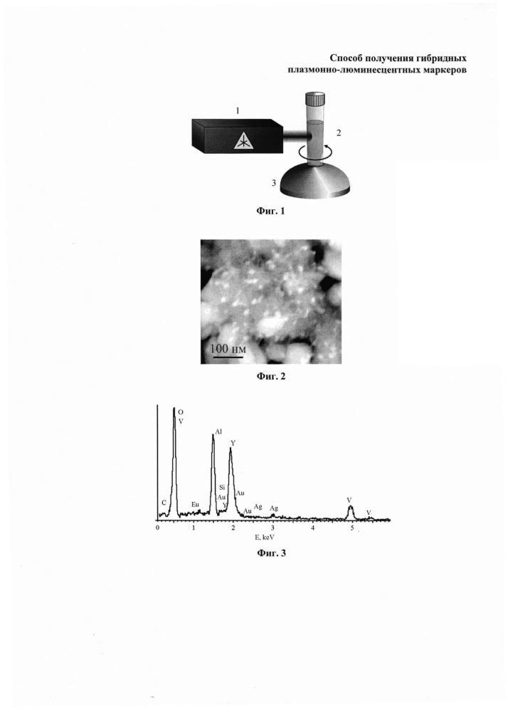 Способ получения гибридных плазмонно-люминесцентных маркеров
