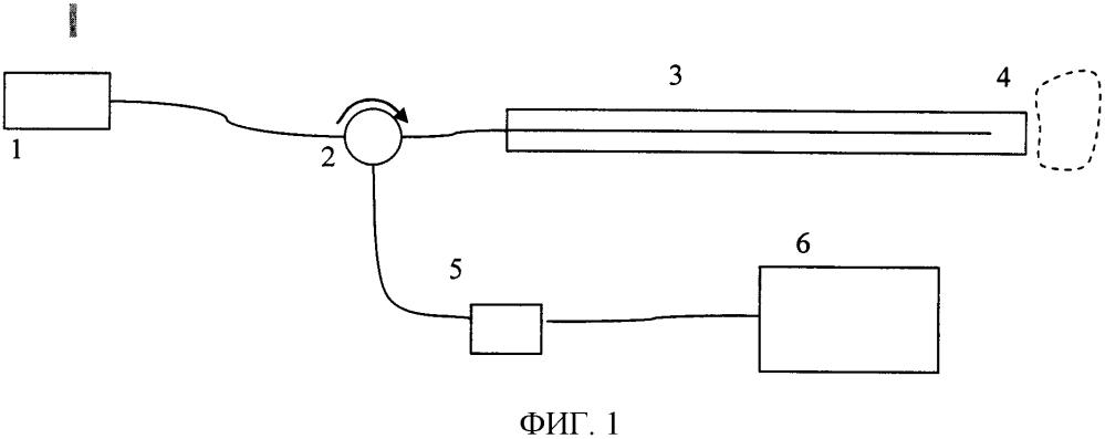 Устройство для регистрации изображений кросс-поляризационной низкокогерентной оптической интерферометрии