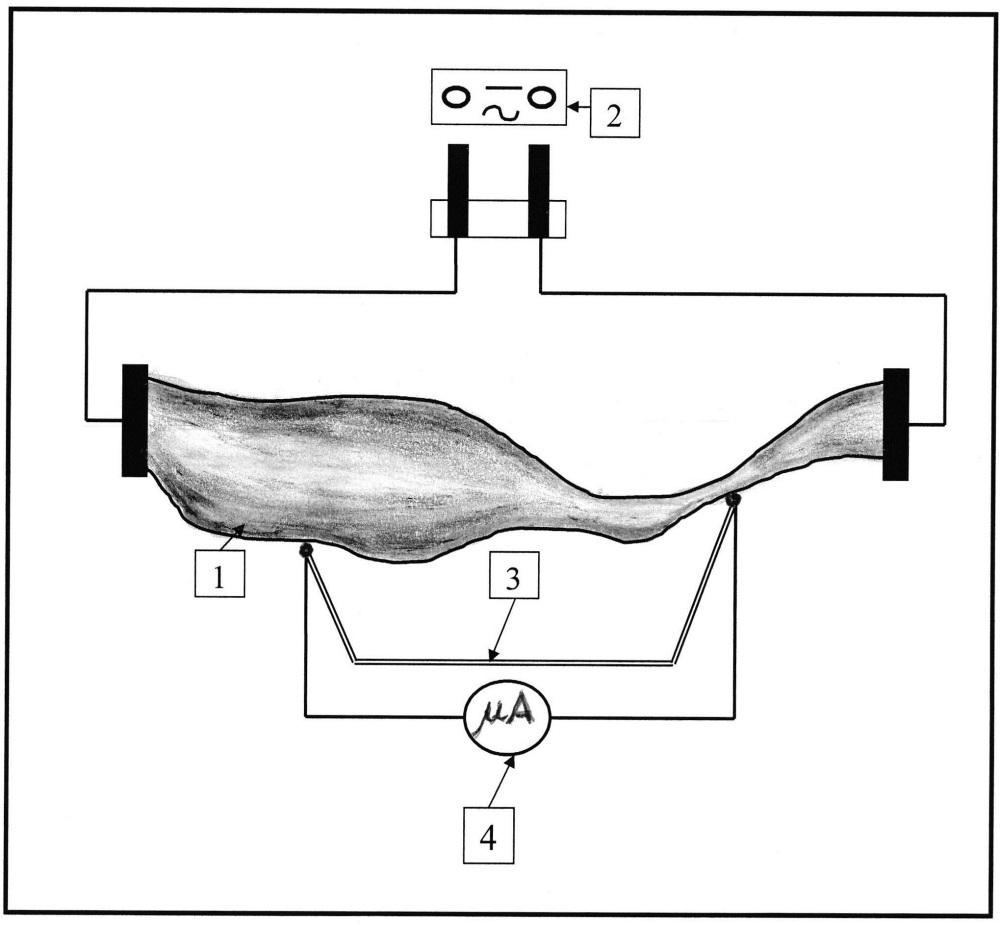 Способ демонстрации закона джоуля в дифференциальной форме