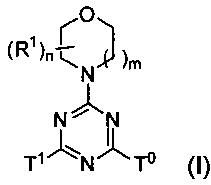 Морфолино-замещенные производные мочевины или карбамата в качестве ингибиторов mtor