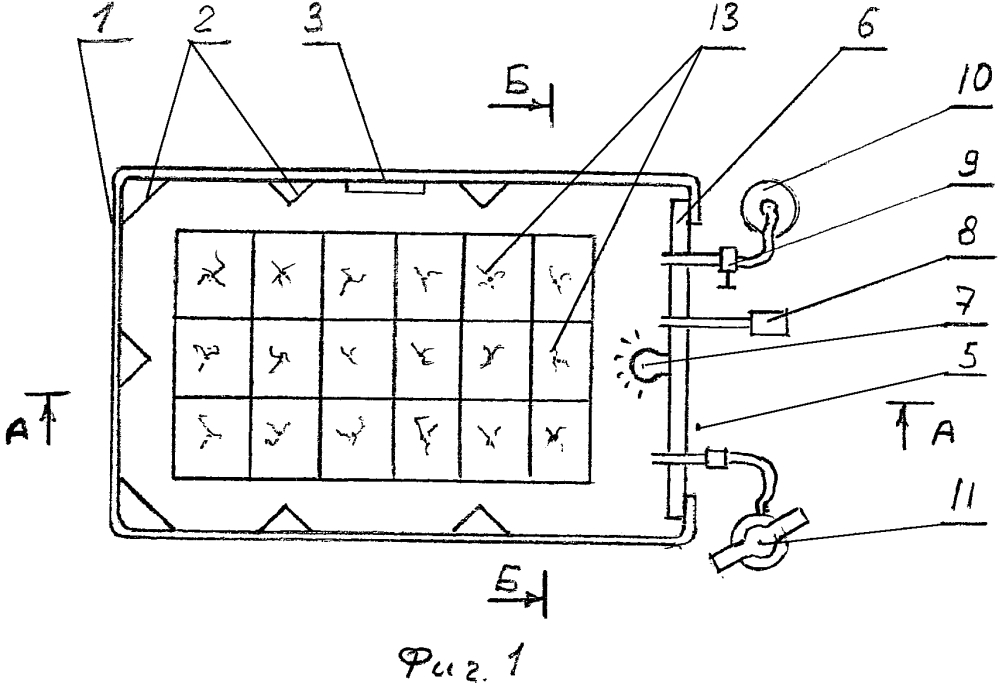 Способ и устройство для выращивания рассады под давлением девяткина в.д.