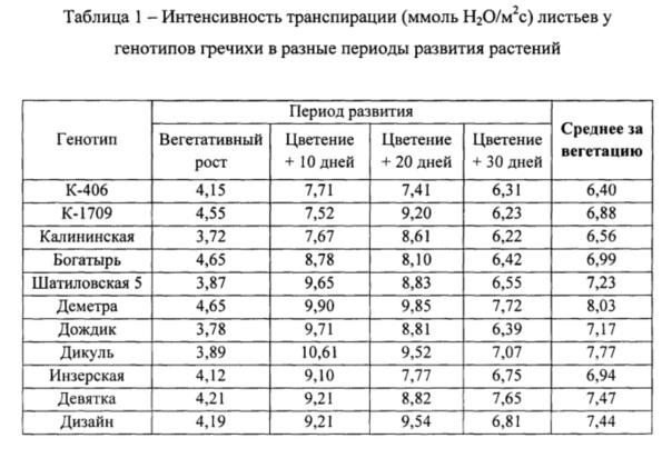 Способ оценки генотипов гречихи по интенсивности транспирации