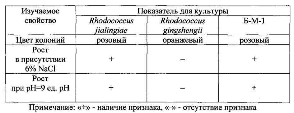 Штамм бактерий rhodococcus jialingiae б-м-1 вкпм ас-1967 - деструктор нефти и нефтепродуктов