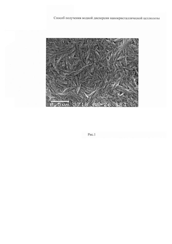 Способ получения водной дисперсии нанокристаллической целлюлозы