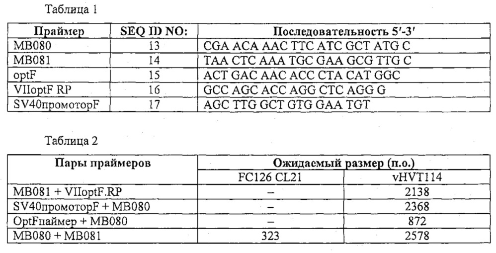 Рекомбинантные векторы hvt, экспрессирующие антигены патогенов птиц и их применение
