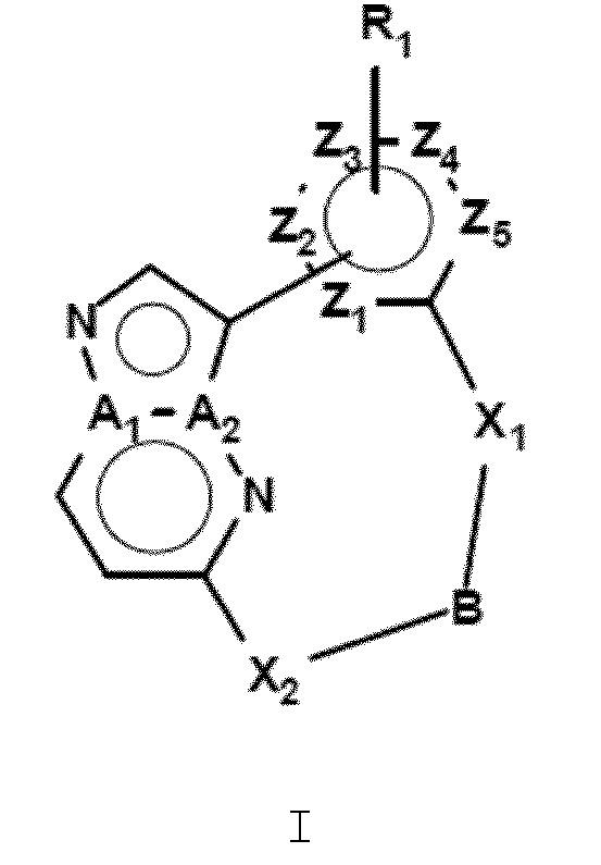 Макроциклические ингибиторы киназы lrrk2