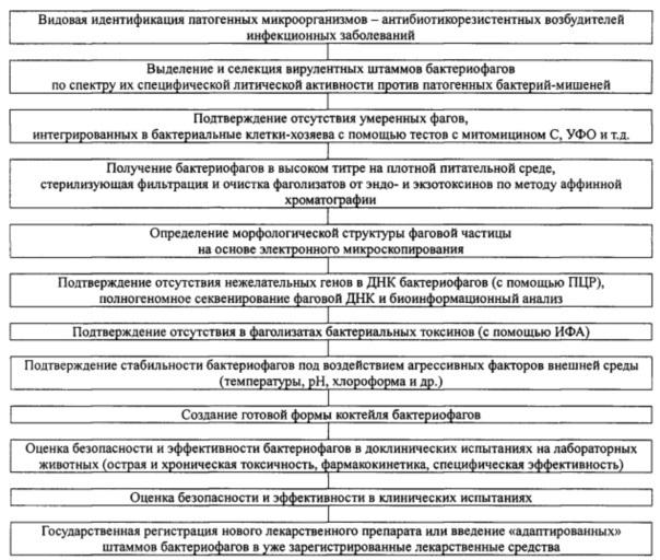 Антибактериальная композиция в виде суппозитория и способ ее приготовления