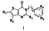 Соединения тиенил[3, 2-d]пиримидин-4-он, способ получения, фармацевтические композиции и их применение