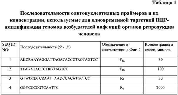 Способ таргетной амплификации геномов возбудителей инфекций органов репродукции человека с целью одновременной идентификации возбудителей с набором праймеров