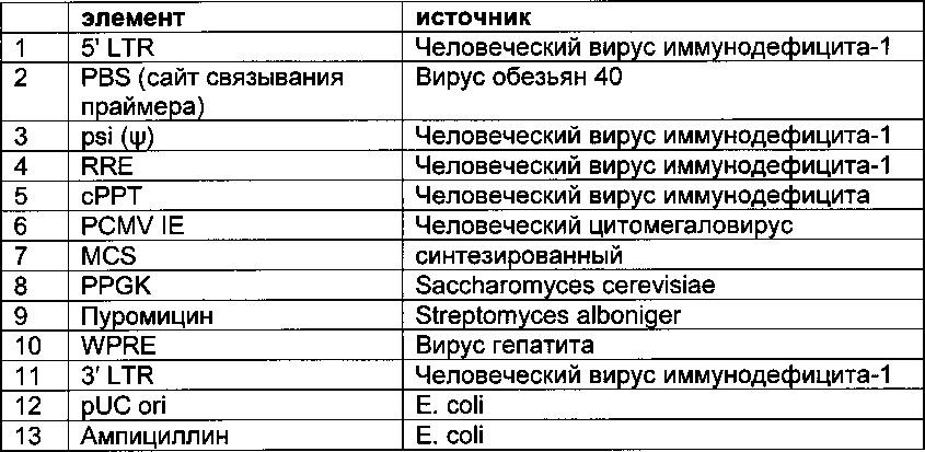 Система индикации на основе полноразмерного антитела для эукариотических клеток и ее применение