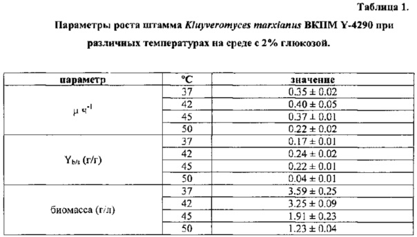 Штамм дрожжей kluyveromyces marxianus вкпм y-4290, применяемый для получения этанола на каталитических гидролизатах целлюлозы