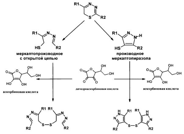 Применение фармацевтической композиции 2-морфолино-5-фенил-6н-1,3,4-тиадиазина с аскорбиновой кислотой в качестве средства коррекции аллоксанового сахарного диабета