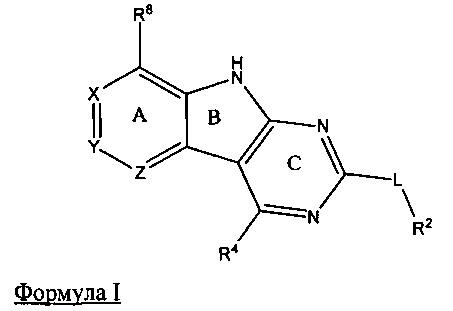 Трициклические ингибиторы гиразы