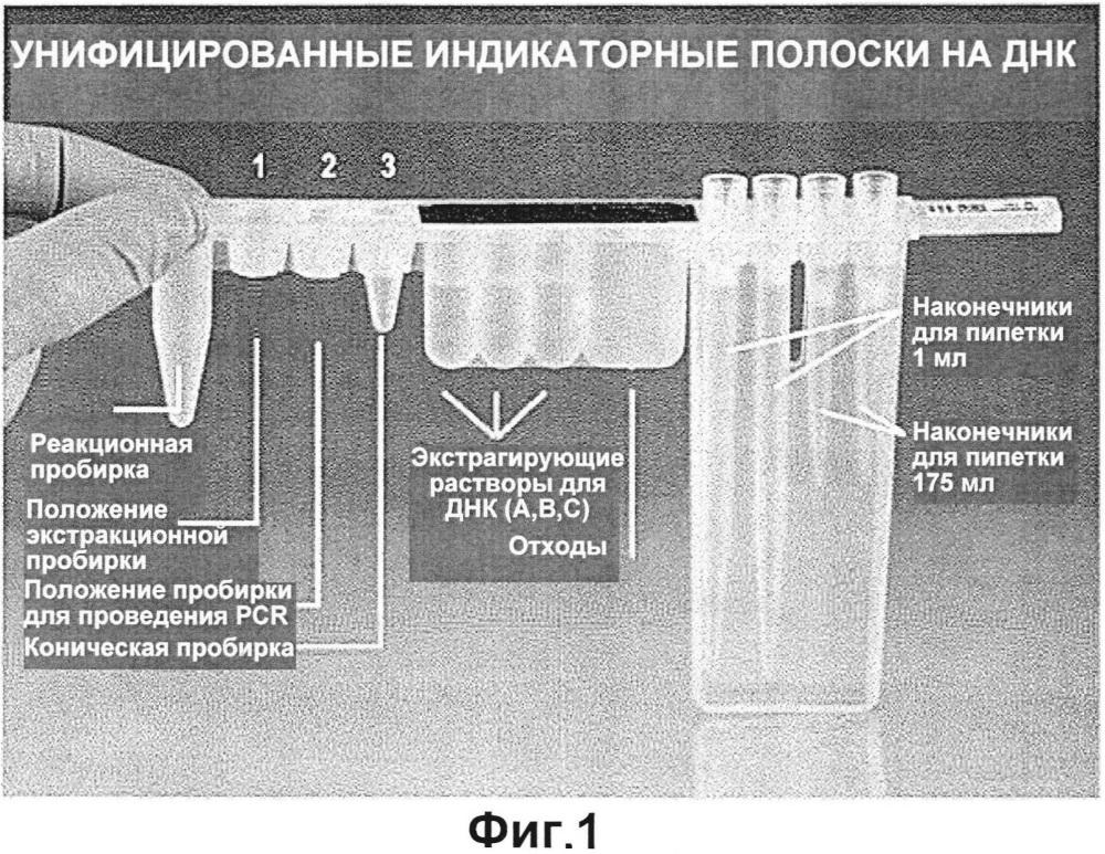 Дополнительное исследование проб с применением остаточных материалов от предыдущего теста