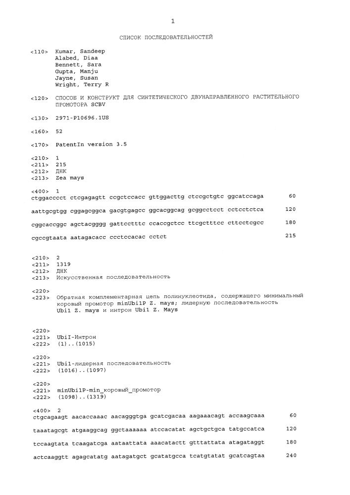 Способ и конструкт для синтетического двунаправленного растительного промотора scbv