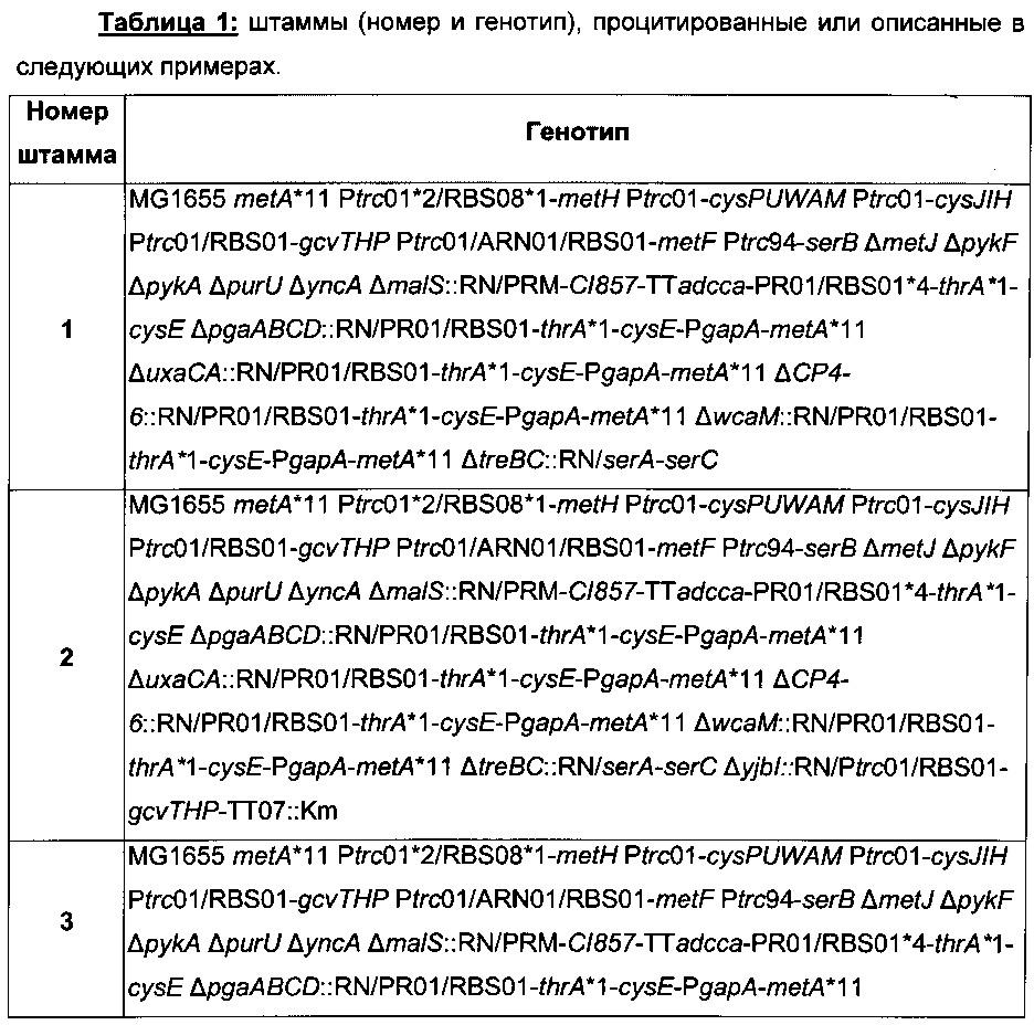 Рекомбинантный микроорганизм для ферментативного производства метионина