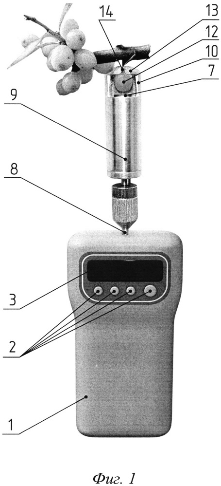 Комбинированный прибор для определения прочностных характеристик ягод
