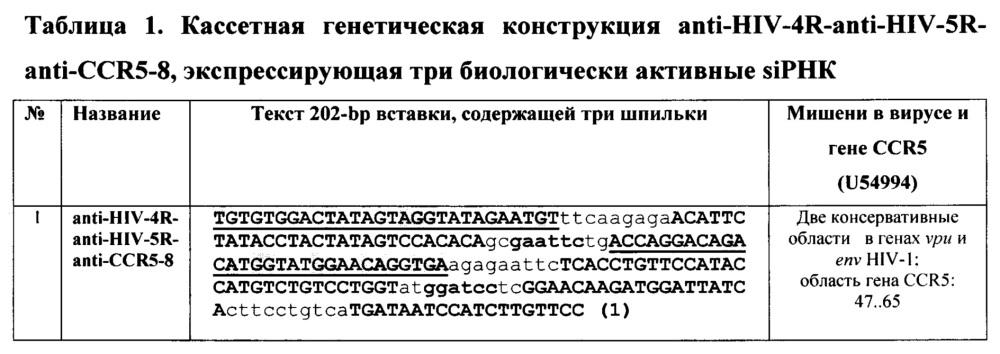 Кассетная генетическая конструкция, экспрессирующая две биологически активные siphk, эффективно атакующие мишени в мрнк генов vpu и env вич-1 субтипа а у больных в россии, и одну siphk, направленную на мрнк гена ccr5