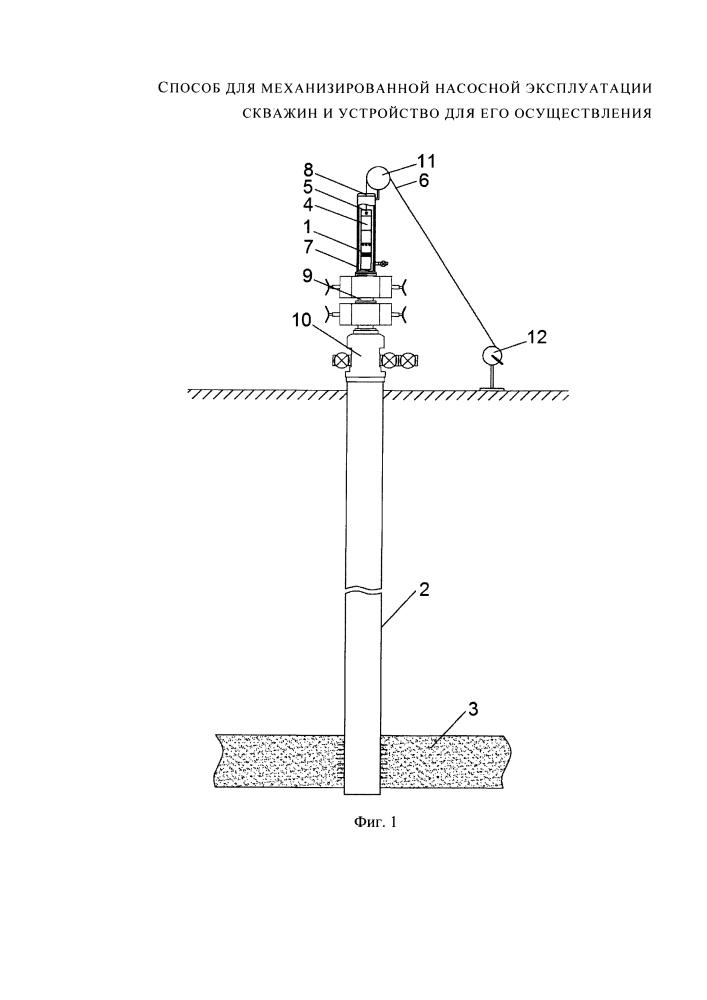 Способ для механизированной насосной эксплуатации скважин и устройство для его осуществления