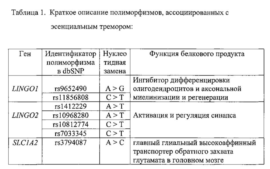 Способ и набор реагентов для выявления полиморфизмов в генах lingo1, lingo2 и slc1a2, определяющих генетическую ассоциацию с эссенциальным тремором