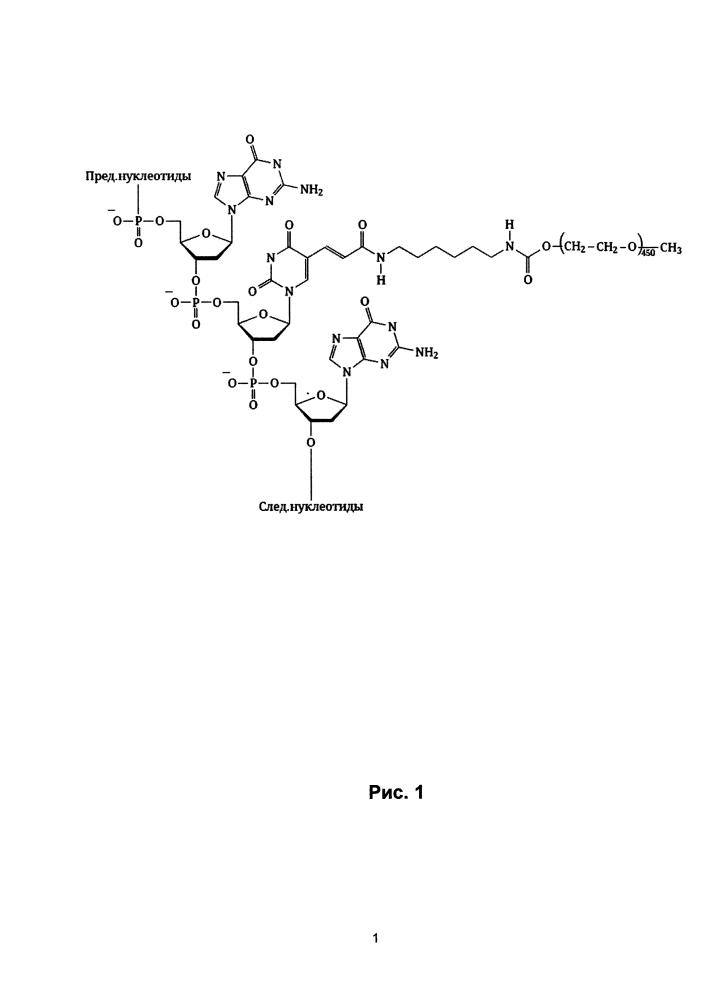Антикоагулянт прямого действия на основе модульного бивалентного днк аптамера, селективного к тромбину