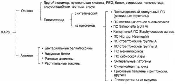 Модифицированный биотин-связывающий белок, слитые белки на его основе и их применение