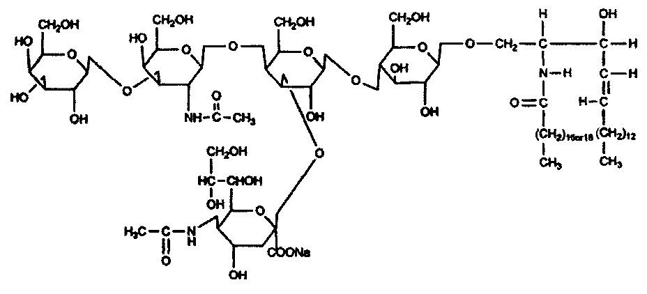 Способ получения натрий моносиалового ганглиозида и нейропротекторное средство на его основе