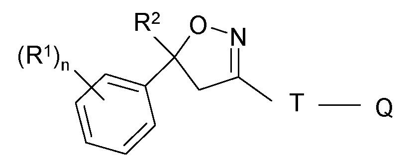 Состав изоксазолина для местного и наружного применения