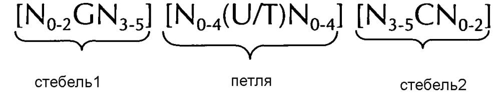 Нуклеиновая кислота, содержащая или кодирующая структуру стебель-петля гистонов и последовательность поли(а) или сигнал полиаденилирования, для повышения экспрессии кодируемого терапевтического белка