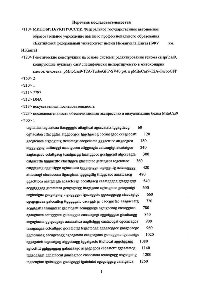 Генетическая конструкция на основе системы редактирования генома crispr/cas9, кодирующая нуклеазу cas9, специфически импортируемую в митохондрии клеток человека