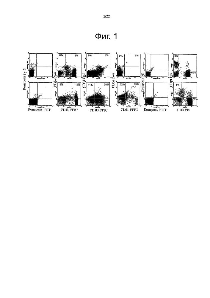 Лечение с применением перепрограммированных зрелых и дифференцированных клеток
