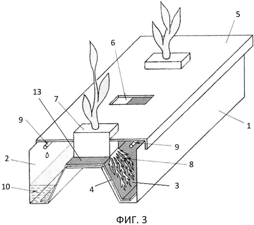 Способ гидропонного бессубстратного выращивания растений и устройство для его осуществления (варианты)