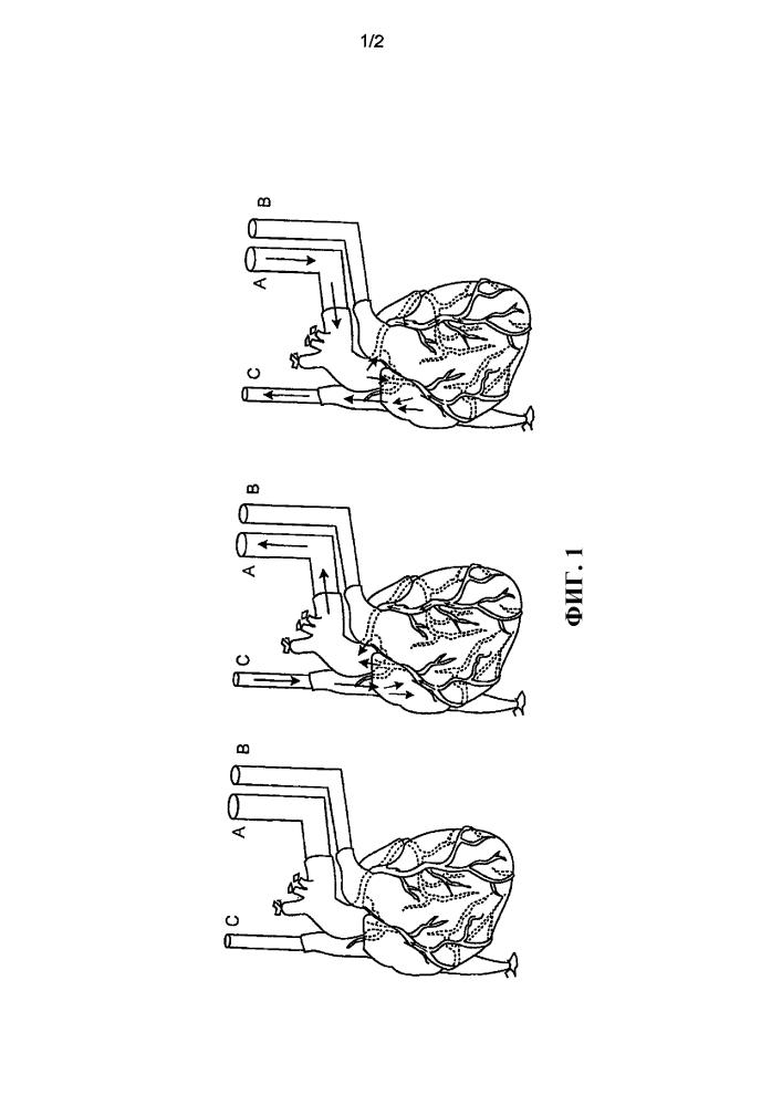 Удаление и восстановление содержания клеток в органах и тканях