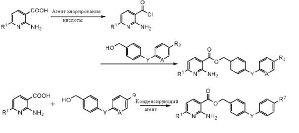 Способ получения производных бензилового эфира 2-аминоникотиновой кислоты