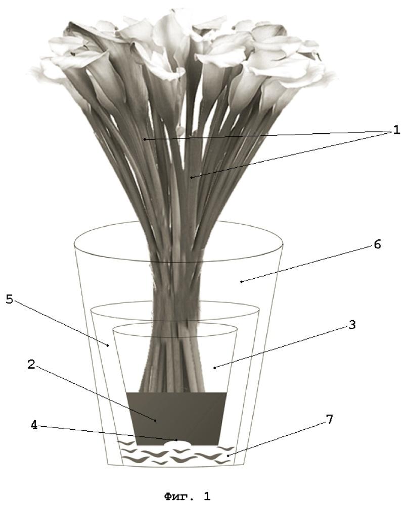 Способ упаковки цветов и упаковка для цветов
