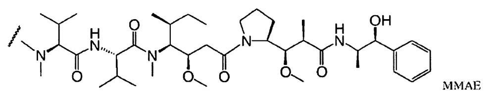 Человеческие антитела и конъюгаты антитело-препарат против cd74