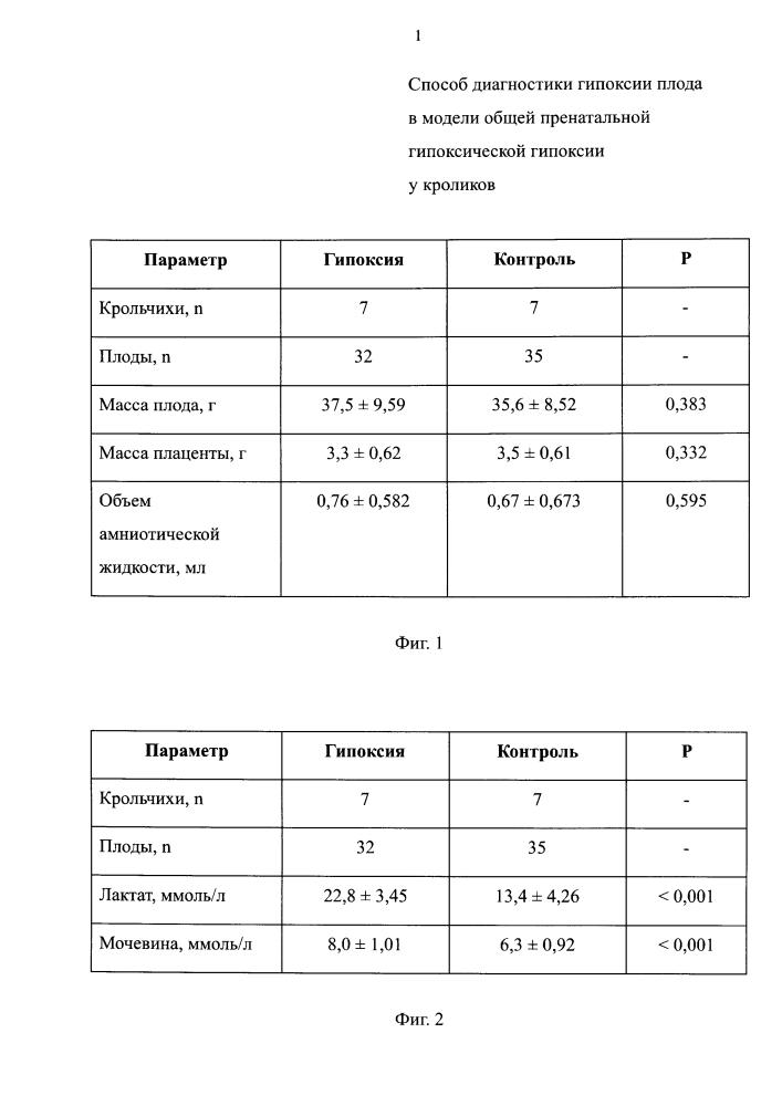 Способ диагностики гипоксии плода в модели общей пренатальной гипоксической гипоксии у кроликов