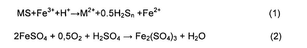 Способ биовыщелачивания упорных золотосодержащих сульфидных флотоконцентратов