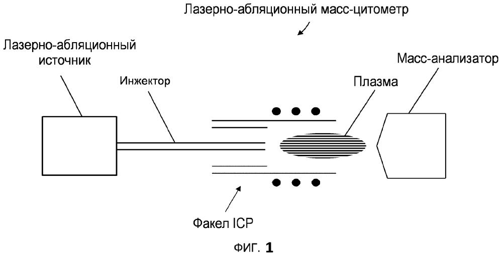 Анализ образцов для масс-цитометрии