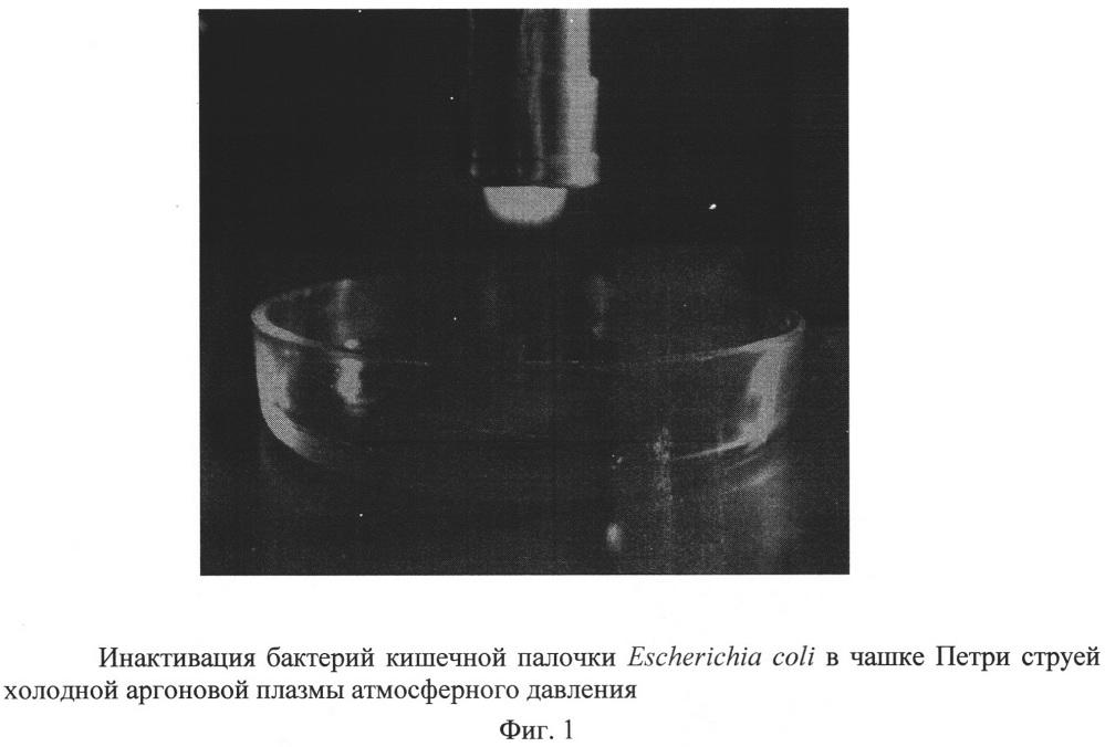 Способ стерилизации газоразрядной плазмой атмосферного давления и устройство для его осуществления