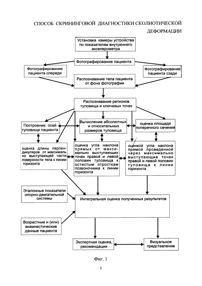 Способ скрининговой диагностики сколиотической деформации
