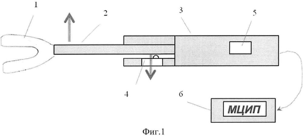Способ измерения силы фиксации полного съёмного пластиночного имплантационного протеза нижней челюсти и устройство для его осуществления
