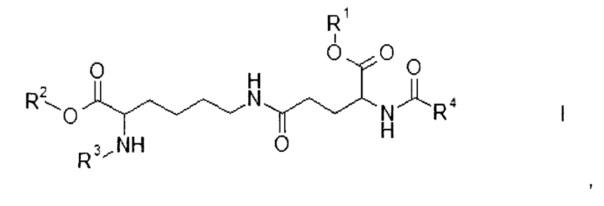 Производные дипептида лизин-глутаминовая кислота