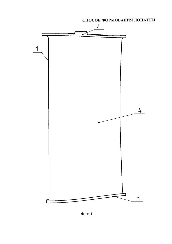 Способ формования лопатки спрямляющего аппарата