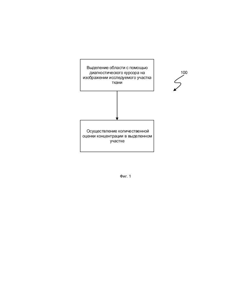 Способ количественной оценки концентрации фотосенсибилизатора по видеоизображению в режиме реального времени при проведении флуоресцентного исследования