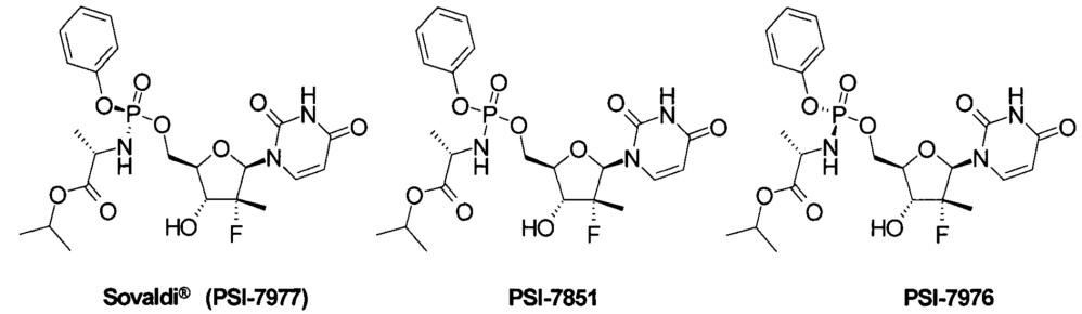 Пролекарство ингибитора ns5b hcv полимеразы, способ его получения и применения